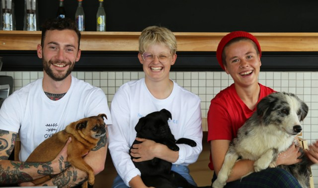 Meet the team behind Grey Lynn's newly launched (and utterly dog friendly) Crumb cafe