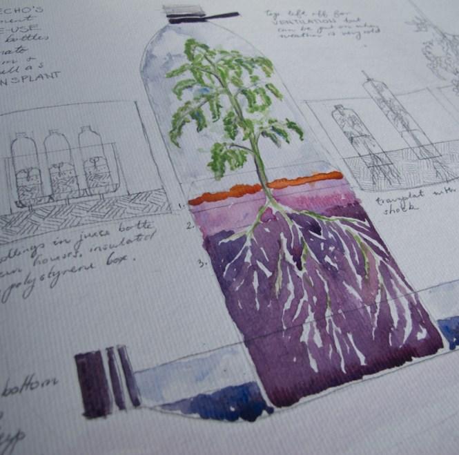 THE TOMATO EXPERIMENT - HOW TO MAKE A PLASTIC BOTTLE ... on bottle house plans, bottle bird feeder plans, straw bale dog house plans, plastic bottle boat building plans, bottle gardening, bottle flower plans, bottle hydroponics,