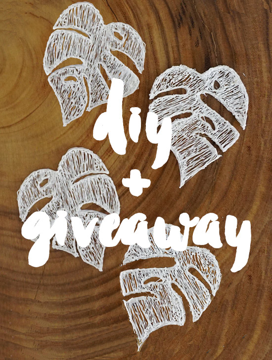 The Design Confidential Entertaining in 3D // DIY Monstera Leaf Coasters + Giveaway