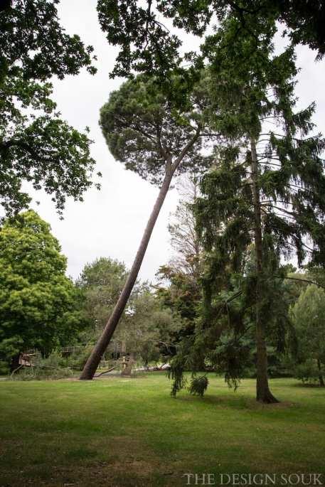 The Design Souk - Arboretum