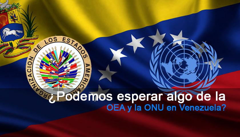 ¿Podemos esperar algo de la OEA y la ONU en Venezuela?