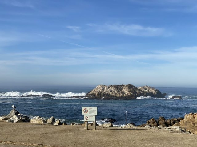 Seal Rock - Pebble Beach