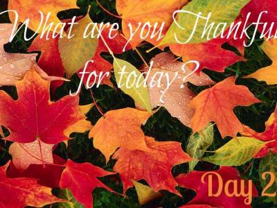 Days of Thanksgiving – Day 2