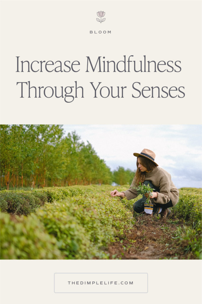 Learn how you can activate your senses each day through mindfulness and intentional living . #ActivateYourSenses #MindfulnessSenses #IntentionalLiving #TheDimpleLife