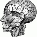 Migraines-and-athletes-Dwyane-Wade-photo