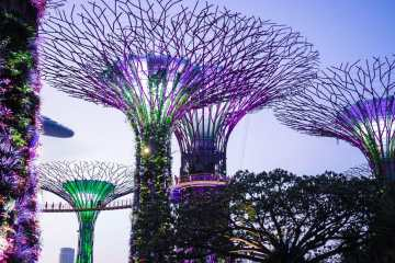 Cool Places in Singapore - Gardens by the Bay