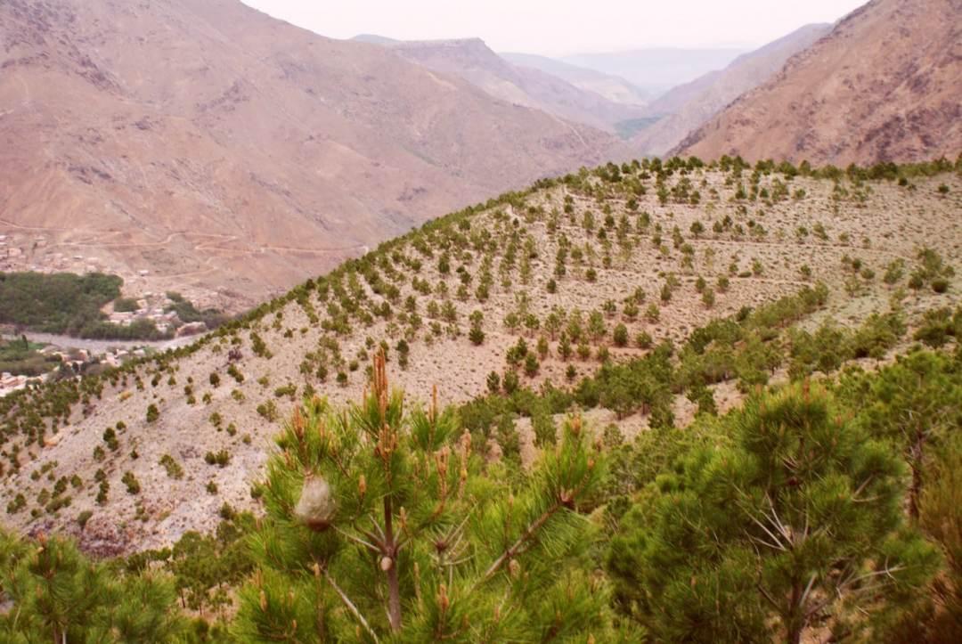 Atlas Mountains Photo Essay