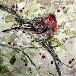 House Finch, oil on canvas, 24 x 24 in.