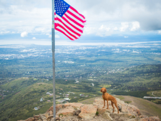with American Flag on top of Flattop Mountain in Anchorage, Alaska