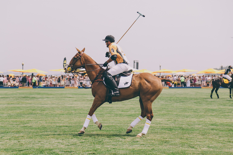 veuve clicquot polo classic fashion blogger anja tufina19