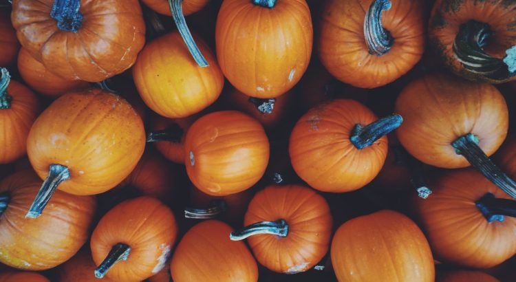 Songs About Pumpkins for Preschoolers