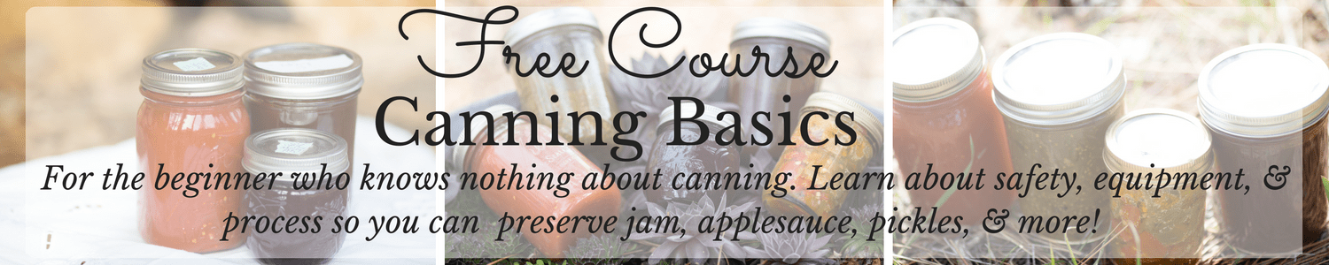 Sign up for this completely free Canning Basics course that will teach you the foundations of canning so you can preserve your own jam, jelly, pickles, applesauce, and more! Sign up now!