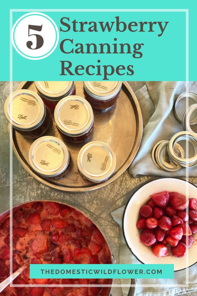5 Strawberry Canning Recipes for Beginners