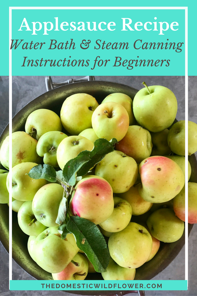 3 Easy Apple Recipes for Beginners