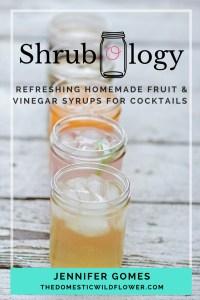 Shrubology: Refreshing Homemade Fruit & Vinegar Syrups for Cocktails