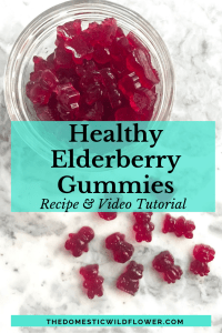 Healthy Elderberry Gummies Recipe