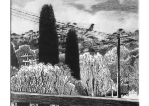 21. Ben Crappsley, View from the verandah at #5, conte pencil on paper, $470