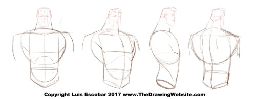 Cartoon Body Formulasthe Drawing Website The Drawing Website