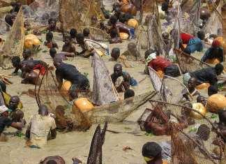 The Best Annual Cultural Festivals in Nigeria