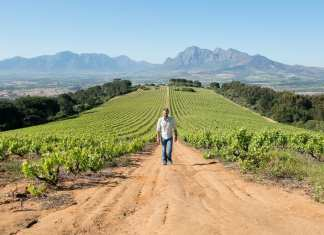 Best Wine Destinations in Africa