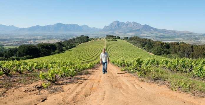 Best Wine Destinations in Africa