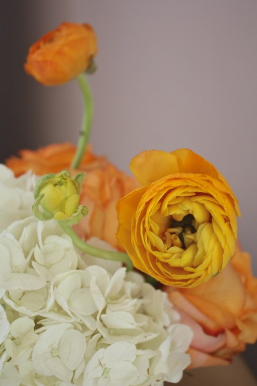 Bright Orange Spring Blooms for Easter