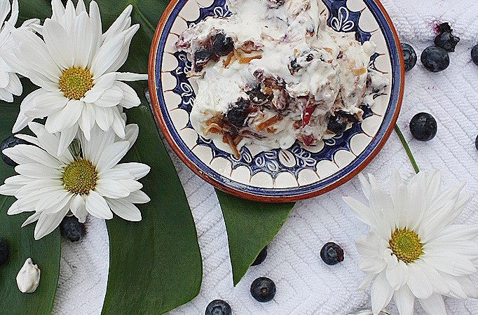 No Churn Blueberry & Coconut Ice Cream