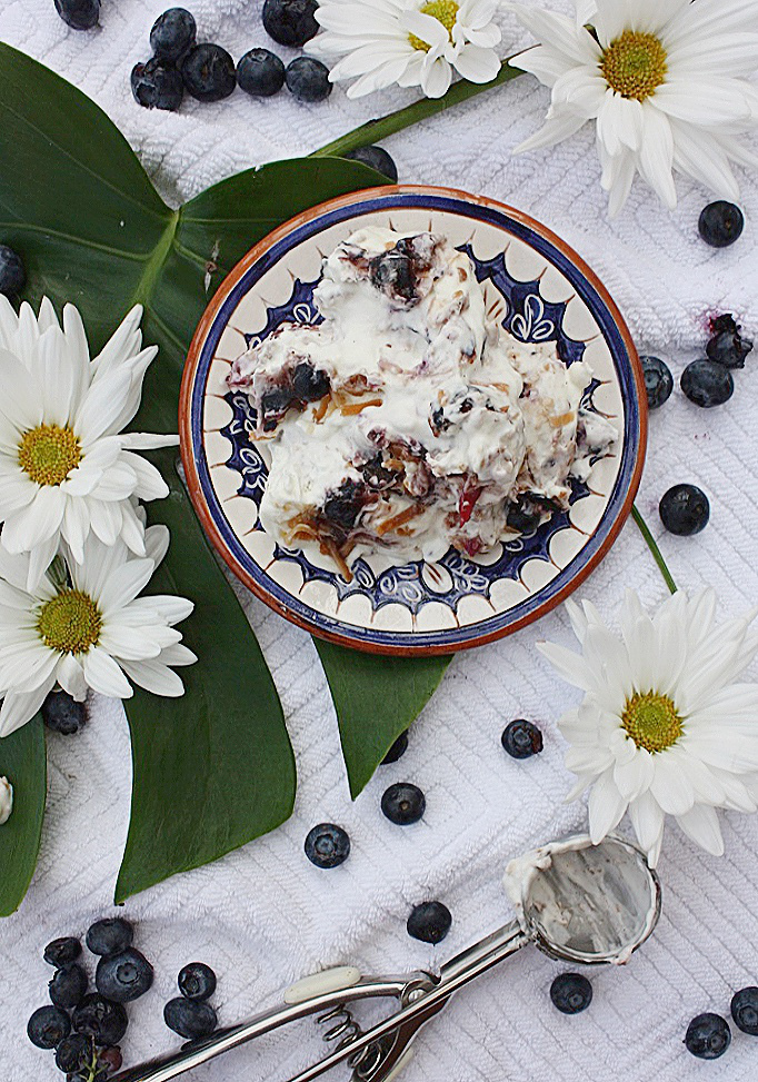 No Churn Blueberry Coconut Ice Cream
