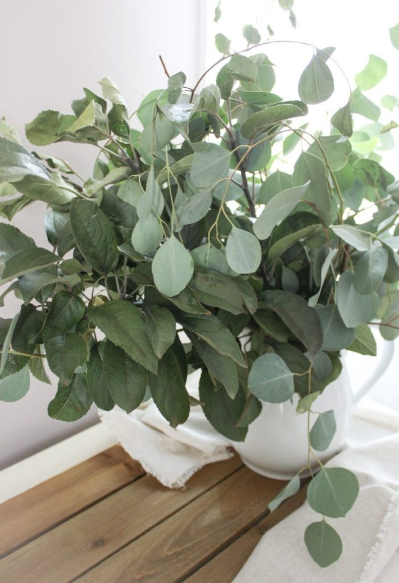 Winter Decorating with Fresh Eucalyptus | Dreamery Events