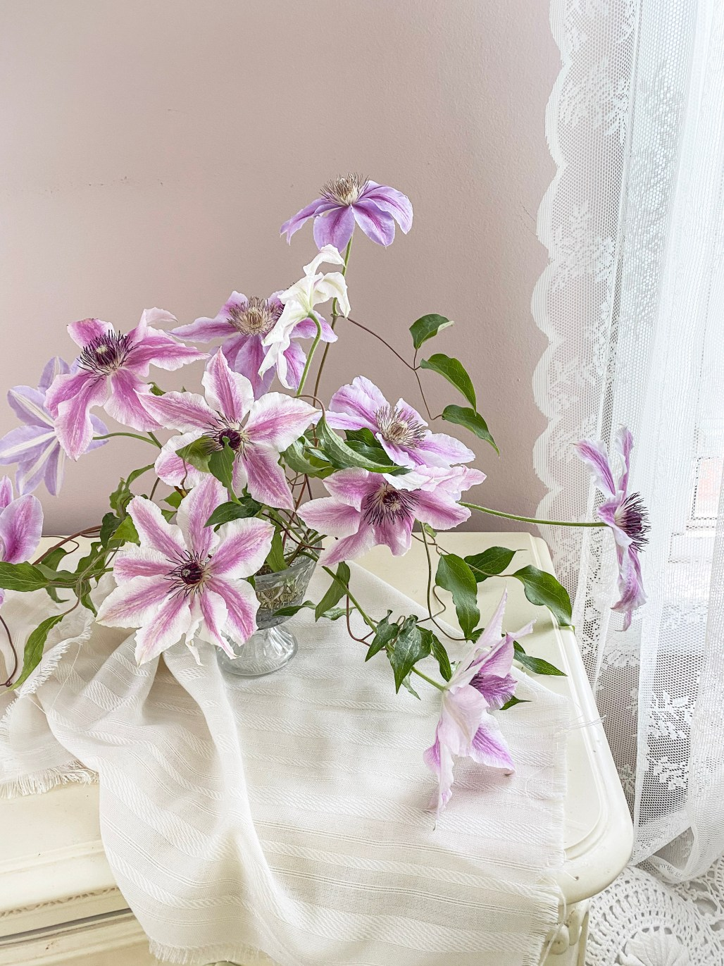 Swooning Over the Graceful Beauty of Clematis... || Dreamery Events