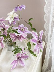 Swooning Over the Graceful Beauty of Clematis...    Dreamery Events