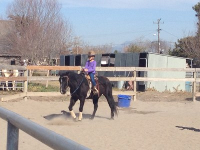 Isabella on horseback, Santa Rosa, January 2014.