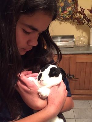 Isabella and her rabbit May, November 2015.