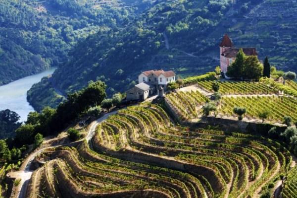 Douro reds gaining in elegance