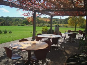 McLarenvale Tourist Information Centre cafe