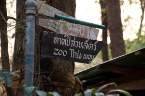 Chiang Mai family adventure