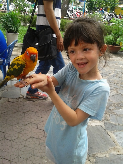 Meeting Peter the Parrot