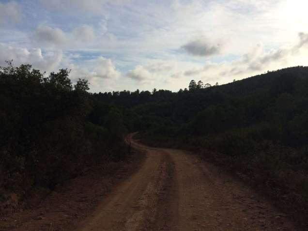 Road to somewhere - hopefully