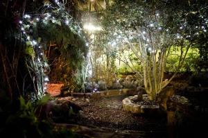 secret her garden grotto Dec 2014