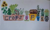 crops in pots image