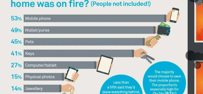 Nest Survey Reveals Ireland Is Not Prepared For Fire & Carbon Monoxide Threat