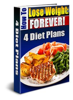 4 diet plans