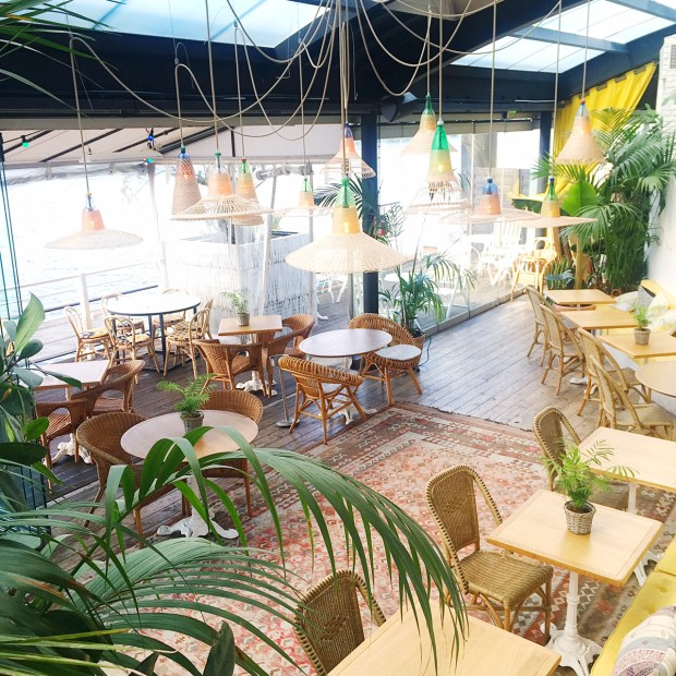 Boho Tropical Paris at Polpo Brasserie