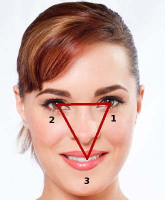 Image result for facial triangle