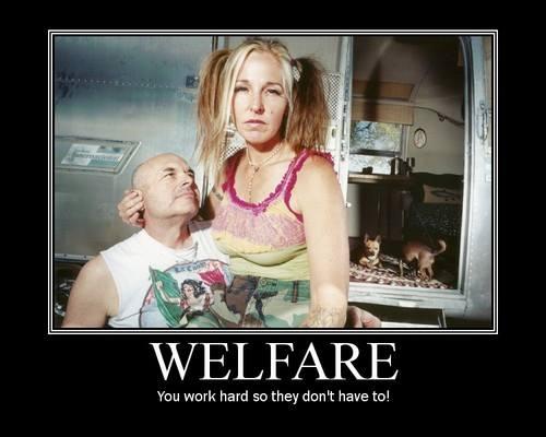 d581f-welfare2b252812529