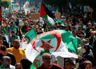 What Is Happening in Algeria