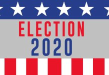 2020 US elections
