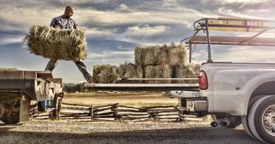 BEDSLIDE - Cargo Solutions