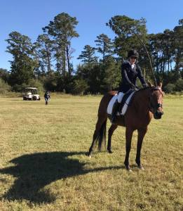 The Blog – Page 5 – The Engineering Equestrian