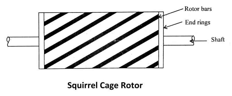 types of ac motor: Squirrel Cage Rotor